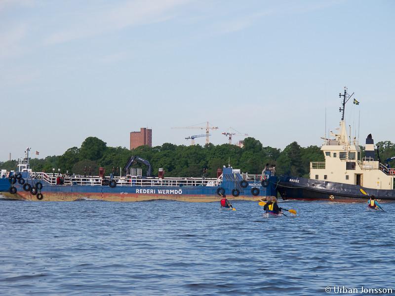 En morgonpigg bokserbåt hejdade vår framfart.