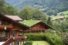 Lauterbrunnen, green roof