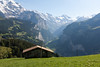 View down the valley from above Wengen
