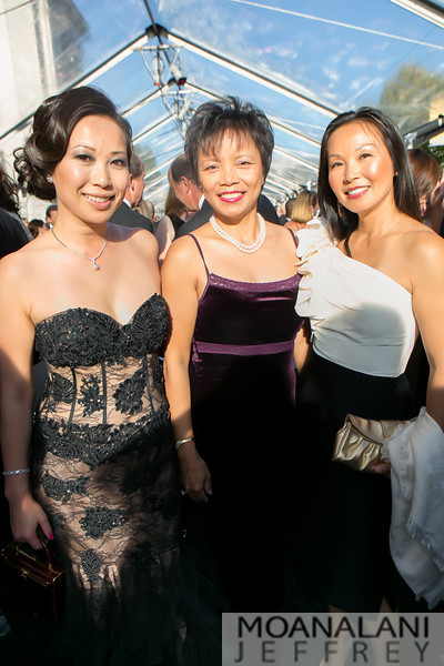 3-1334 Celine Wang, Florence Kong, Maggie Wei