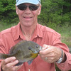 "HONEST 9 1/2"" BLUEGILL CAUGHT RIGHT OFF THE DOCK ...WASN'T THE ONLY BIGGIE EITHER...THERE MUST BE LOTS OF EM'"