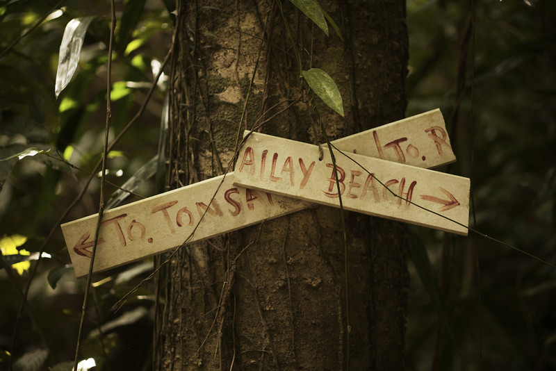 Dilapidated signage points the way on a peaceful jungle trail.