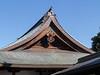Ueno Park, Kiyomizu Kannon-do, temple roof