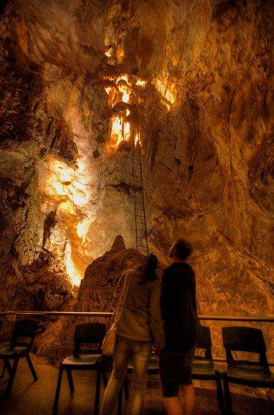 A couple looking up a long antique ladder (not now used, at least by the large open-access tour groups) in the 'Cathedral' chamber within the Jenolan Caves system.