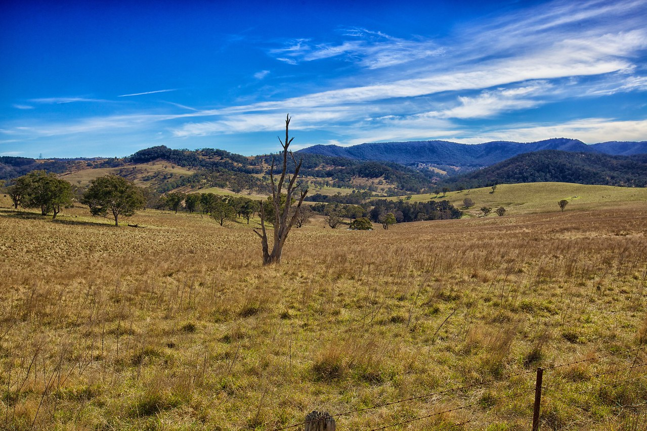 Seen along the Jenolan Caves Road.
