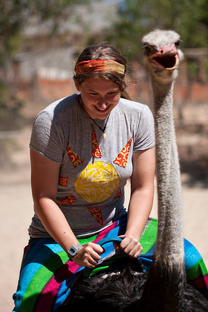 Because I totally knew that people rode ostriches, and have always wanted to. Not. Oh the things you learn abroad.
