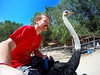 ... Because ostrich rides are what everyone thinks of when they think about Vietnam...