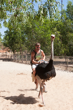 Eric on his first ostrich ride. Once in a lifetime!