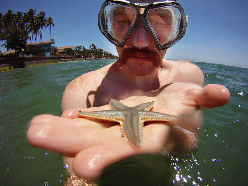 A small starfish gives me an odd look off the beach from our resort in Mui Ne, Vietnam.