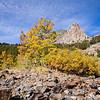 Fall colors and Dunderberg Peak