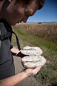 Roadside geology.