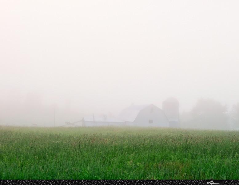 Fogday-10