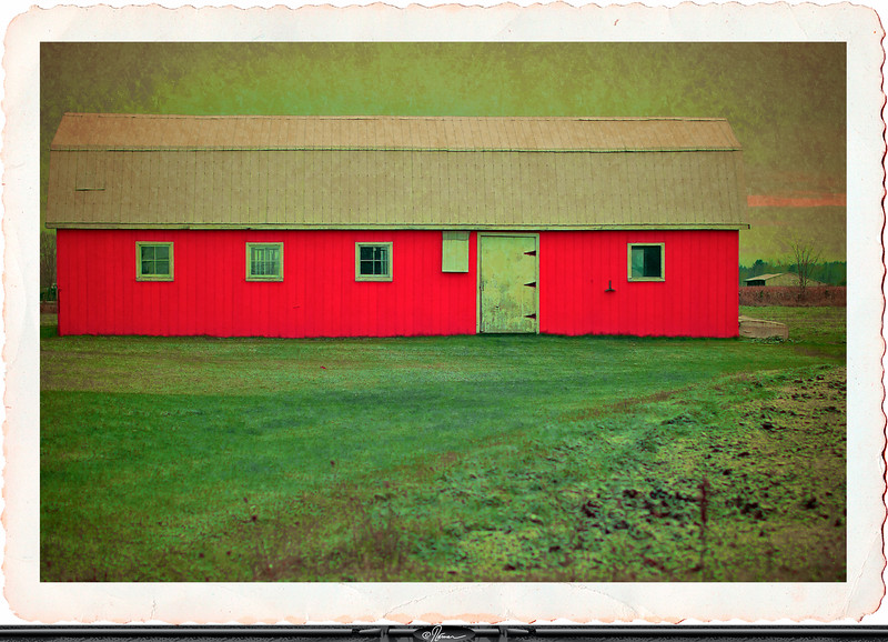 TheRedShed-1