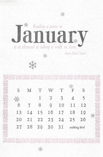 January, 2013, walking bird