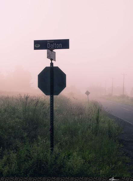 Fogday-16
