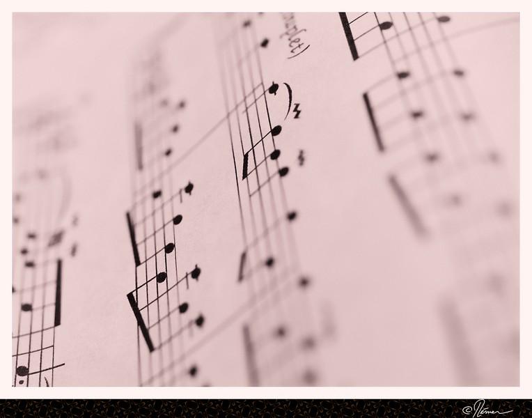 MusiqueEnFeuille-5