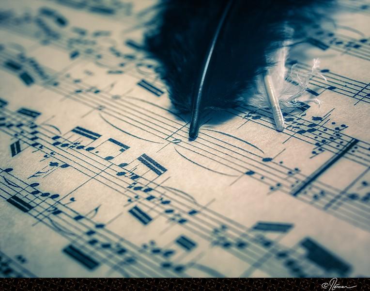 MusiqueEnFeuille-1