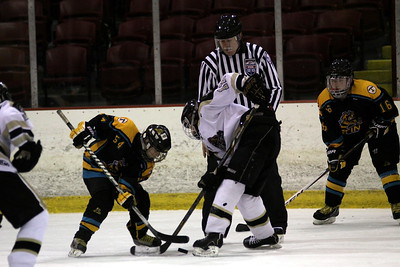 Bt A - Oakland Jr. Grizzlies v Troy Sting (Sunday)