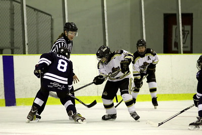 PW A - Oakland Jr. Grizzlies v Macomb Mavericks (Sunday)