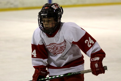 Sq B - Fraser Falcons Predators v Mt. Clemens Red Wings (Sunday)