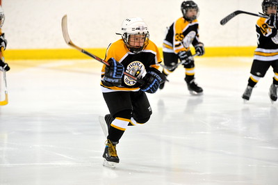 Mite - Livonia Bruins (Game 2)