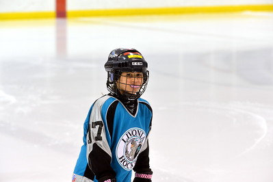 Mite - Livonia Bruins (Game 1)
