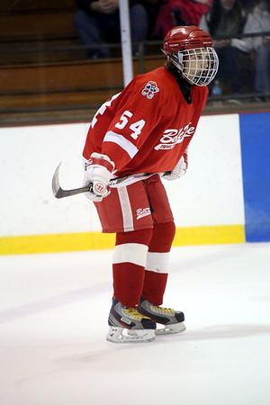 Midget A Michigan Ice Hawks