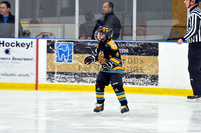Squirt AA Troy Sting