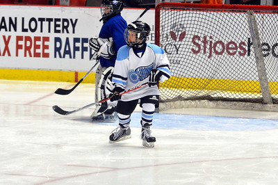 Mite B - SCS Maple Leafs