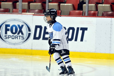 Mite B - Wyandotte Warriors