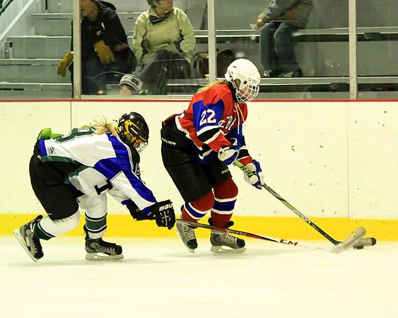 2013-14 Moose Lake Area Girls Hockey