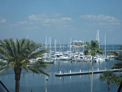 Mr. and Mrs. Kahn: A view from the Salvatore Dali Museum in St. Petersburg, FL