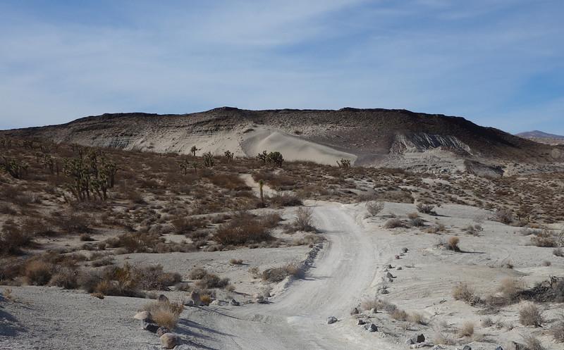 Western Mojave Desert