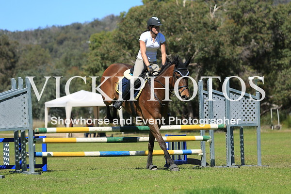 SHOW JUMPING - HEIGHT 80CM