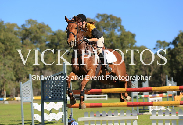 Show Jumping - HEIGHT 105CM