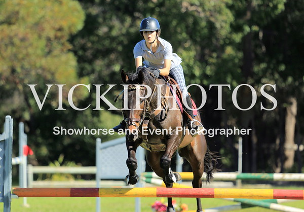 Show Jumping - HEIGHT  95CM