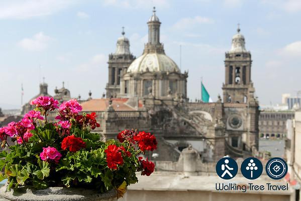 2013 Bellarmine Mexico 1