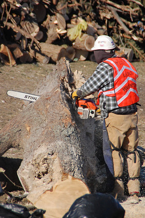 2013-12-07 DR Washington Chainsaw Work