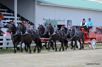 28 Sunday, August 25, 2013 Special 6 Horse Hitch