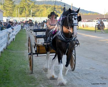 12 Friday, August 23, 2013 Draft Horses Ladies