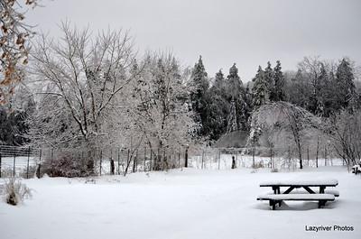 Ice Storm = December 2013