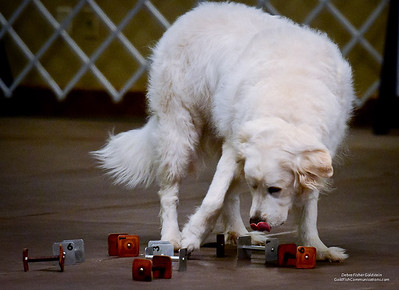 Great Pyrs and Peers-0962