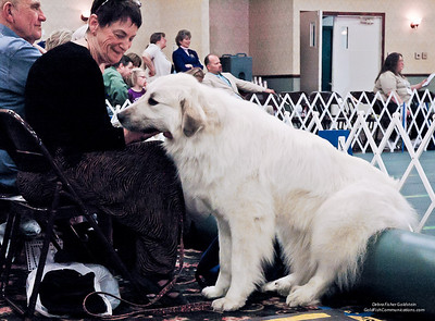 Great Pyrs and Peers-0124