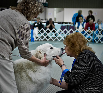 Great Pyrs and Peers-569