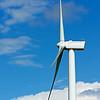 Amherst Windmills 05