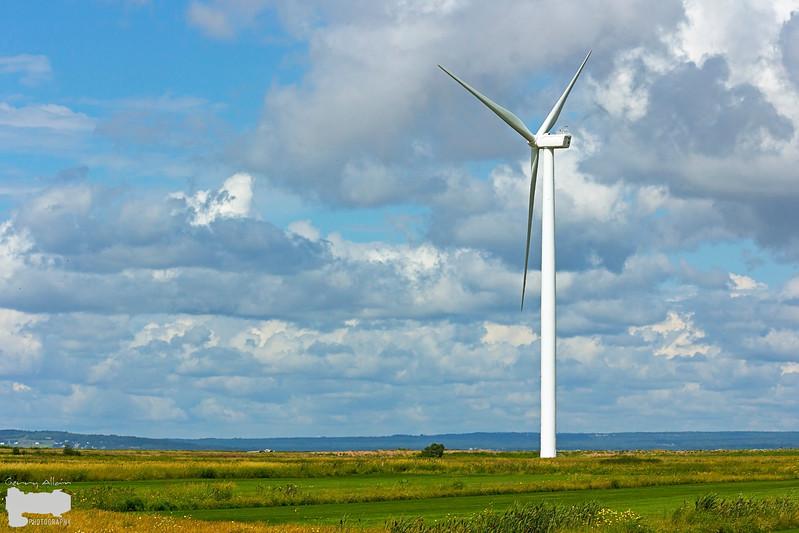 Amherst Windmills 07