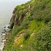 Cape Enrage 04