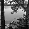 Wood Lake 08 B&W