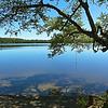 Wood Lake 06