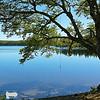 Wood Lake 05